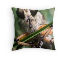 Robber Fly (Asilidae) 2 Throw Pillow