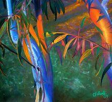Sunset Gums by Simon Aberle