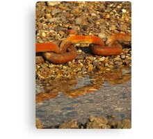 links to the past Canvas Print