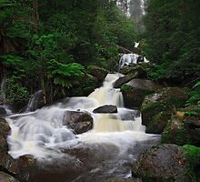 Keppel Falls after heavy rain. by Mark Shean