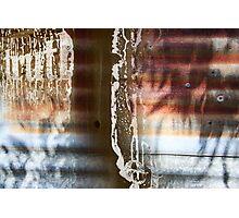 Eucalyptus billboard Photographic Print