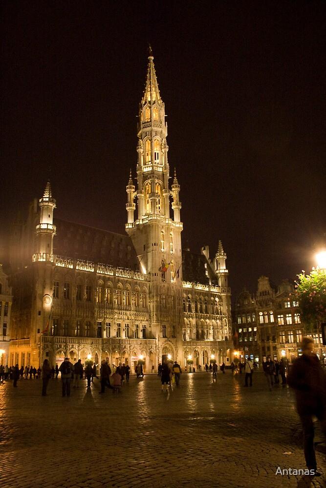 Brussels at night (Belgium) by Antanas