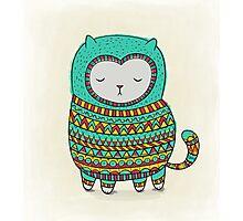 cozy cat Photographic Print