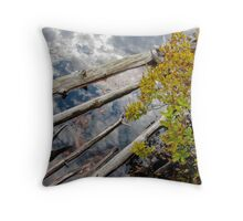 Reflections, clouds behind logs Throw Pillow