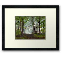 Foggy Morning in Woodland Framed Print