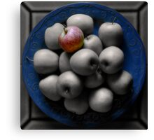 With an Apple, He Astonished Canvas Print