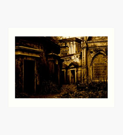 Catacombs at Highgate Cemetery (West) Art Print
