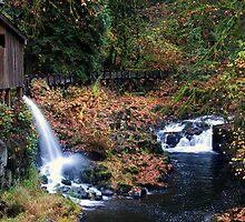Cedar Creek Grist Mill by Bob Hortman