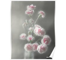 Pink Centered Carnations 1 - Ethereal Radiance Poster