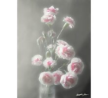Pink Centered Carnations 1 - Ethereal Radiance Photographic Print