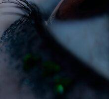 Horizon by Laura Towersey