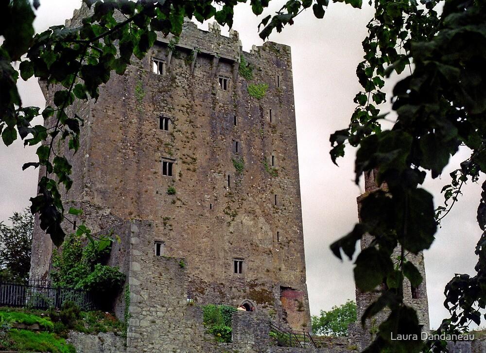 Blarney Castle, Ireland by Laura Dandaneau