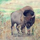 Where The Buffalo Roams by arline wagner