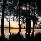 Sunset at Warners Bay, NSW, Australia by Marilyn Baldey