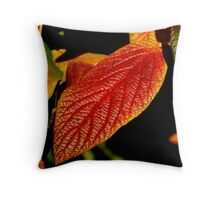 112209-103 Throw Pillow