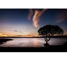 Kenfig pool and tree Photographic Print