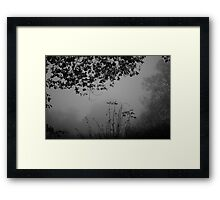 Winter's gloom Framed Print