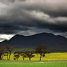 Approaching Storm - Stirling Range by Eve Parry