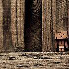 "Danbo - New ""Ranbo Wood"" by jdreamer"