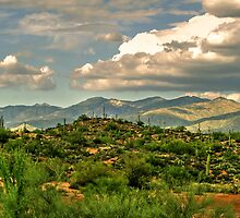 Apache Trail by George Lenz