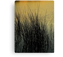 Farewell To The Day ~ Part Six Canvas Print