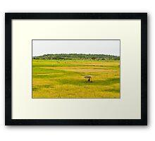 a wonderful Guinea-Bissau landscape Framed Print