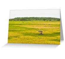 a wonderful Guinea-Bissau