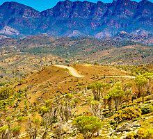 South Australia - Flinders Ranges - Brachina Gorge drive 10 by Geoffrey Thomas