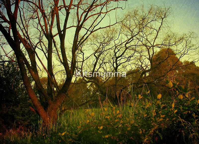 The Glen by Kitsmumma