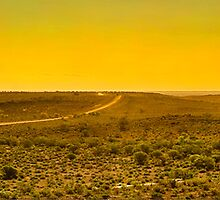 South Australia - Flinders Ranges - Brachina Gorge drive 13 by Geoffrey Thomas