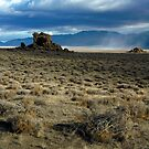 Wild Nevada by Kurt Golgart