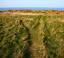 Coastal Paths, Wales by Erland Howden