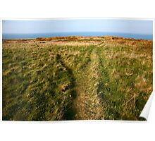 Coastal Paths, Wales Poster