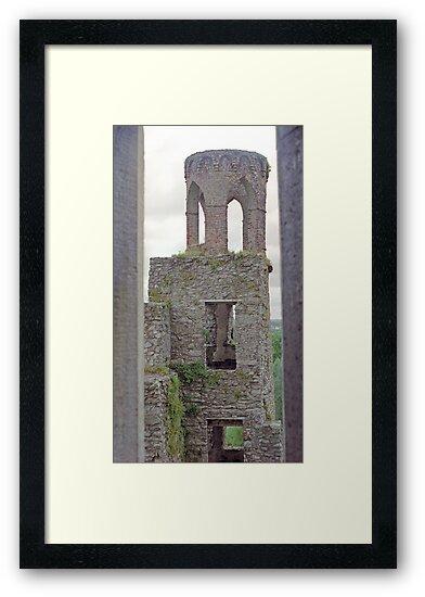 Tower, Blarney Castle by Laura Dandaneau