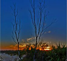 Burning Sunset at Dreamtime by Tim Richardson
