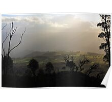 Afternoon Kanimbla Valley Through Silhouetted Trees Poster