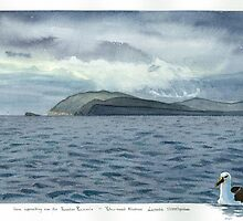Yellow Nosed Albatross and Storm approaching over Forestier Peninsula Tasmania. by melhillswildart