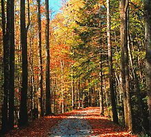 AUTUMN ROAD by Chuck Wickham