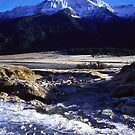 Mount Aspiring National Park by Paul Mercer