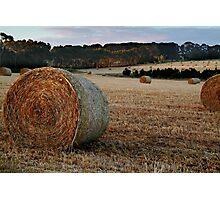 Making Hay,Fresh Water Creek Photographic Print