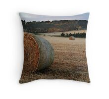 Making Hay,Fresh Water Creek Throw Pillow