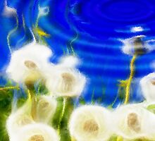 Abstract Dandelions Reflection by Régis Charpentier