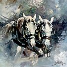 Australian Draught Horses by Tanya Zaadstra