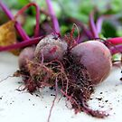 Beetroot by Andrew Edgar