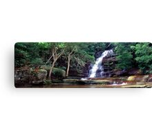 Somersby Falls, NSW Canvas Print