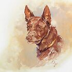 Australian Kelpie Head Study by Pieter  Zaadstra