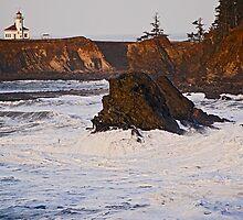 Cape Arago Light, Coos County Oregon by Bryan D. Spellman