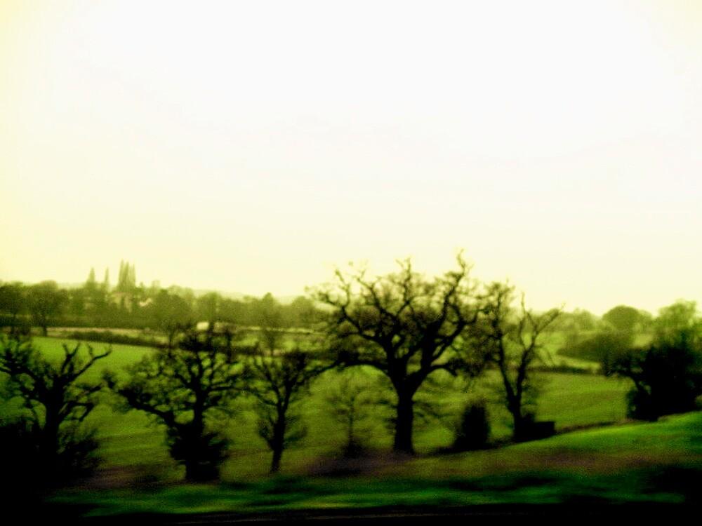 English Fields by Daniel Weeks