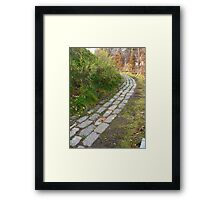 Don't fall off the rails Framed Print