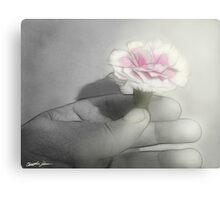 Pink Centered Carnations 2 - Contemplation Canvas Print